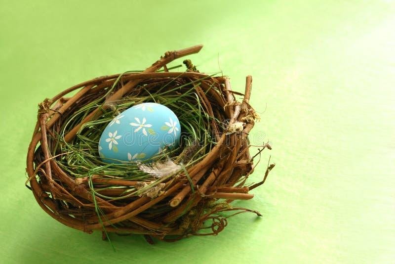 jajko gniazdowa wiosna zdjęcie royalty free