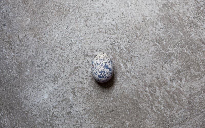 Jajko przepiórka na kamiennym tle zdjęcia stock