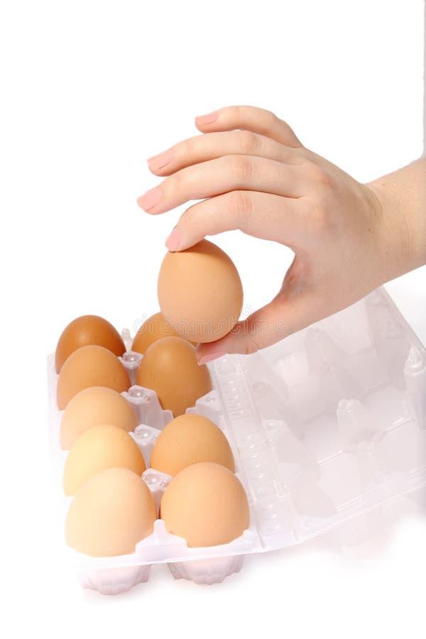 jajko ręka zdjęcia royalty free