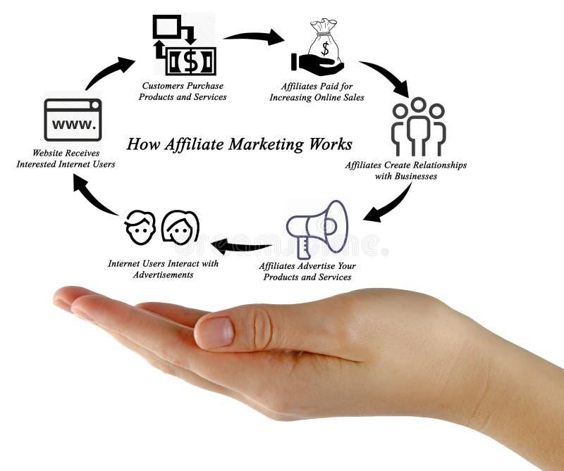 Jak filia marketing Pracuje obraz stock