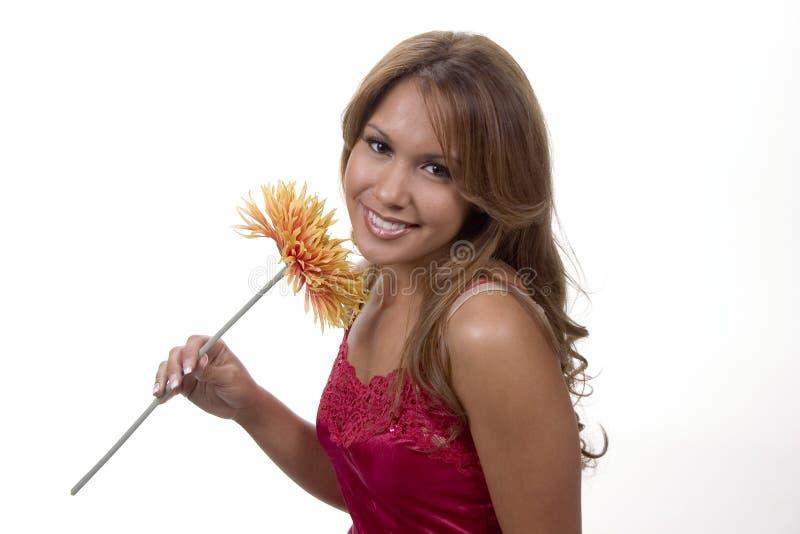 jak kwiat miłego obrazy royalty free