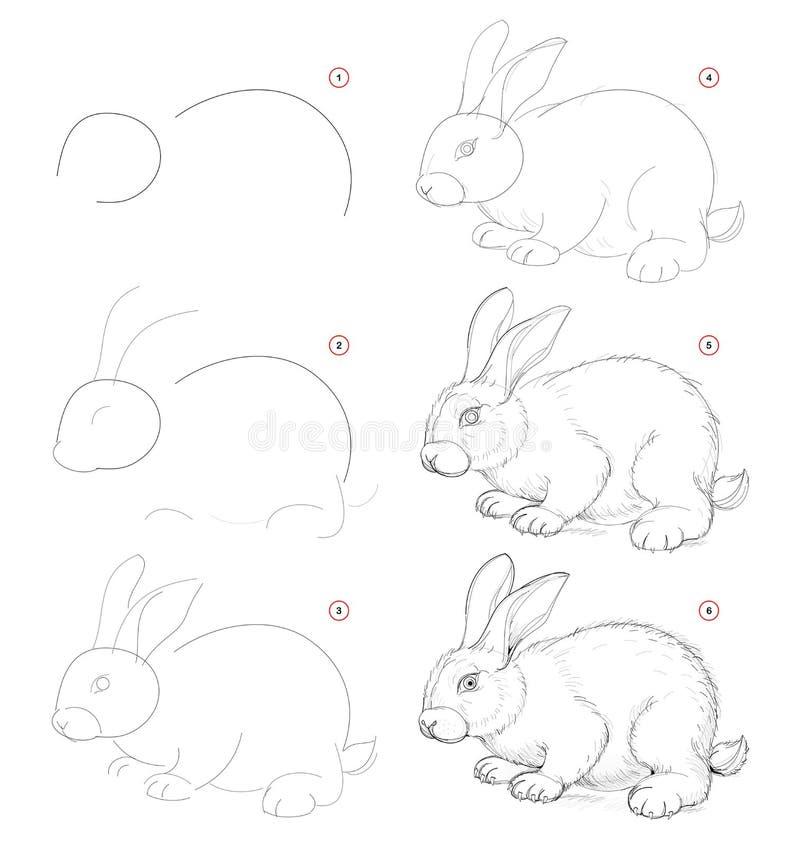 Jak wyciągnąć ze szkicu natury słodkiego małego królika Tworzenie rysunku ołówka krok po kroku Strona edukacyjna dla artystów ilustracji