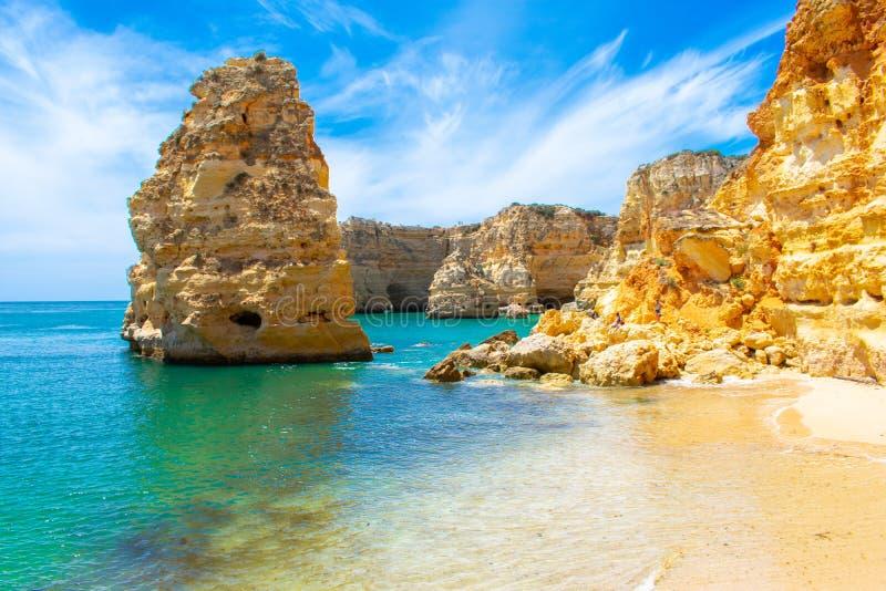 Jakaranda Praya de Marinha mest iBeautiful purpurfärgat träd för härlig strand mot vit byggnad och blå himmel, Faro, Algarve Port royaltyfri fotografi