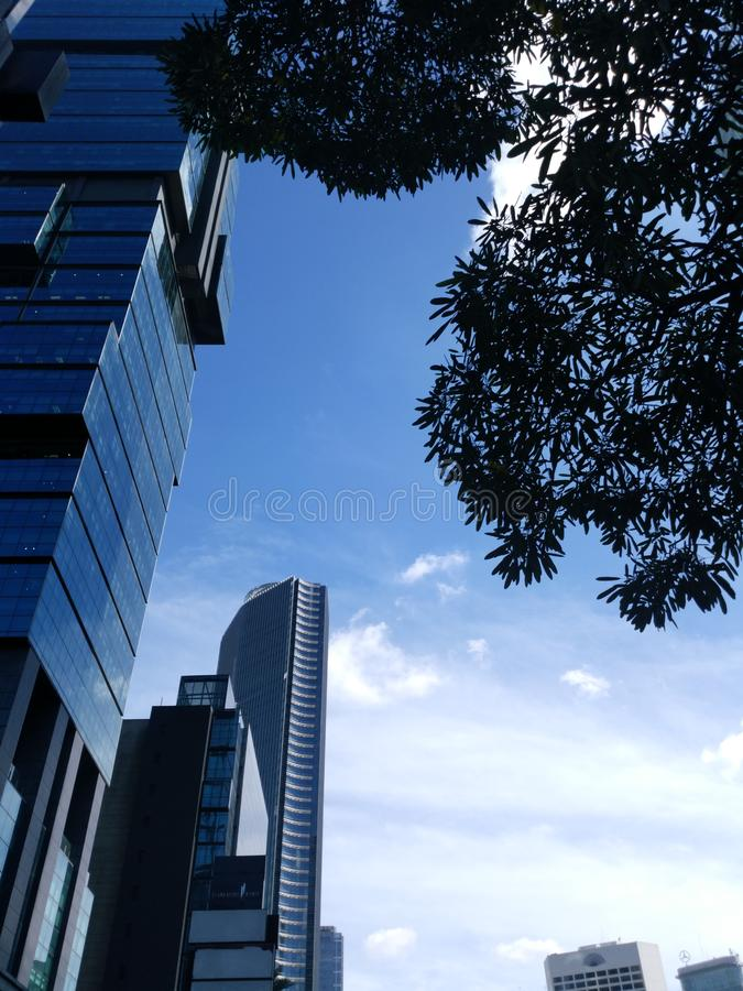 Jakarta building view in the City. Morning Blue sky and many clouds with tree as the foreground stock photos