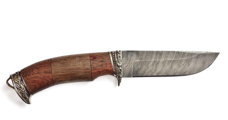 Jaktkniv med trähandtaget på en isolerad vit bakgrund royaltyfri foto