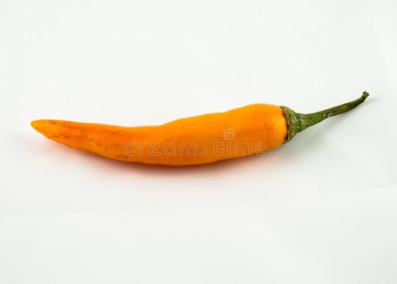 Jalapeni Chili Peppers su fondo bianco immagine stock