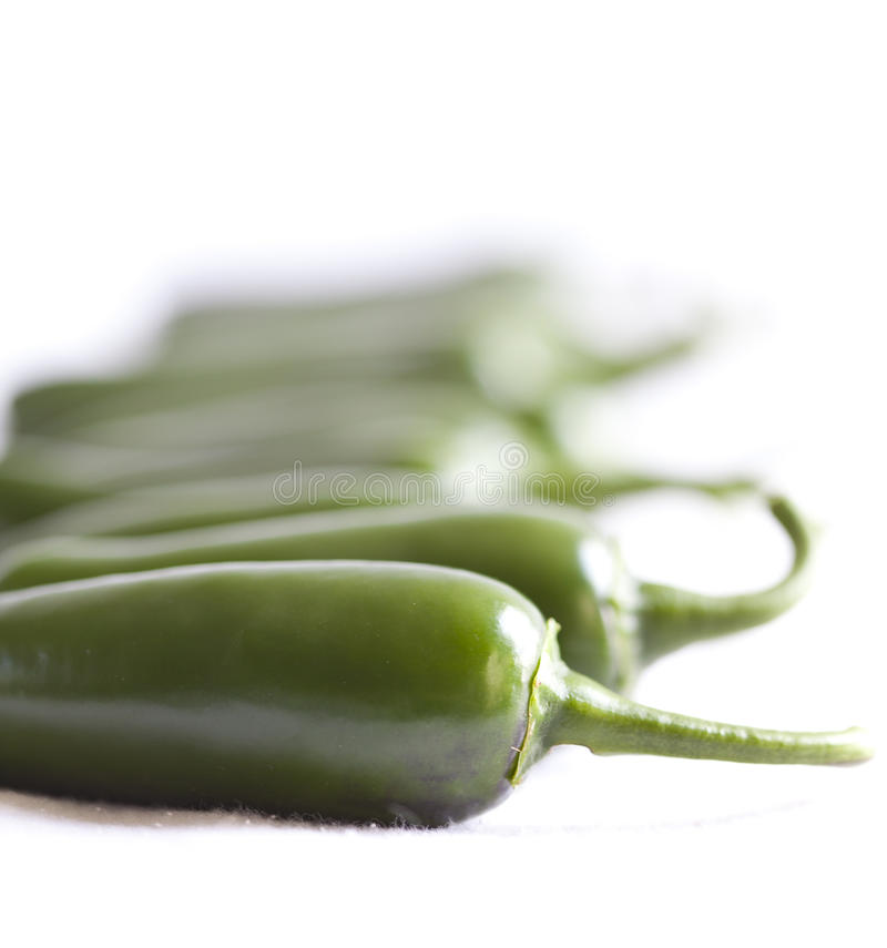 Jalapeno line. A grouping of green, Jalapeno peppers arranged into a line photographed on white and using a shallow depth of field stock photography