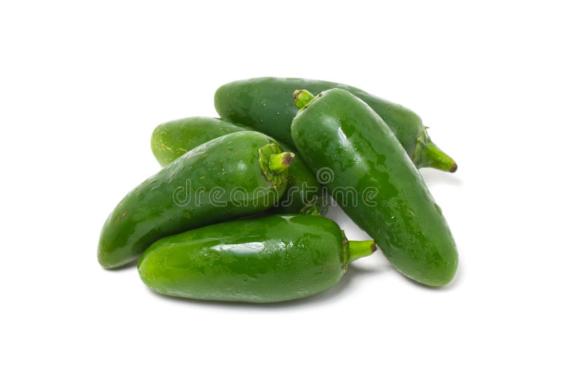 Jalapeno Pepper. Jalapeno Pepper Isolated On White stock image