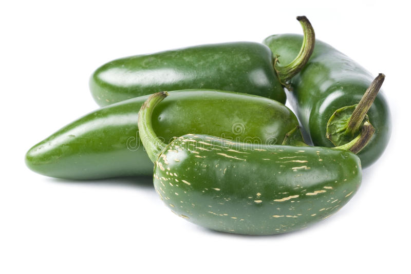Jalapeno Peppers Isolated on White royalty free stock photos