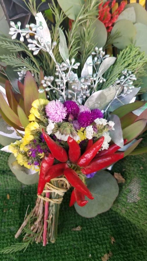 Jalepeno blommar rött royaltyfria bilder