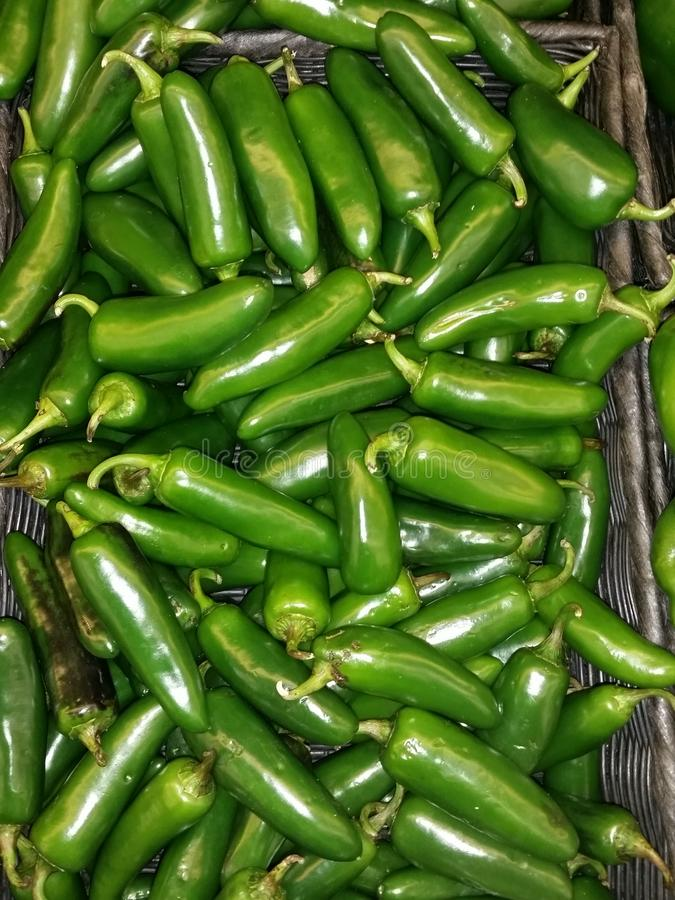Jalepeno peppers stock image