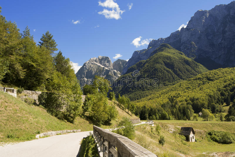 Jalovec von der Klotzhülse Mangartom - Slowenien stockfoto
