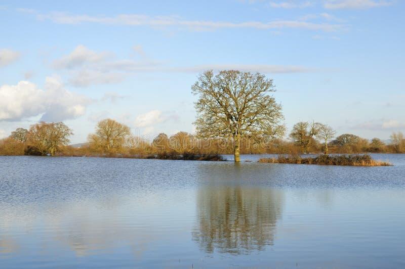 Jamón de Ashleworth en la inundación imagen de archivo