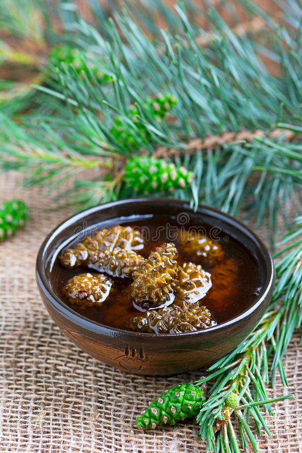 Free Jam From Pine Cones Royalty Free Stock Photo - 55313805