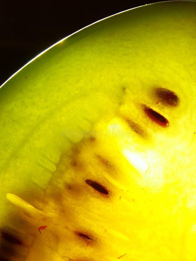 jam melonu wody obrazy royalty free