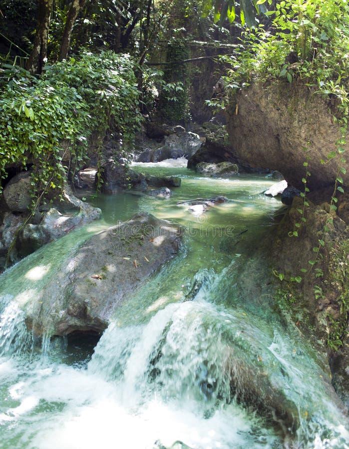 jamaïca De kleine waterfal rivier royalty-vrije stock afbeeldingen