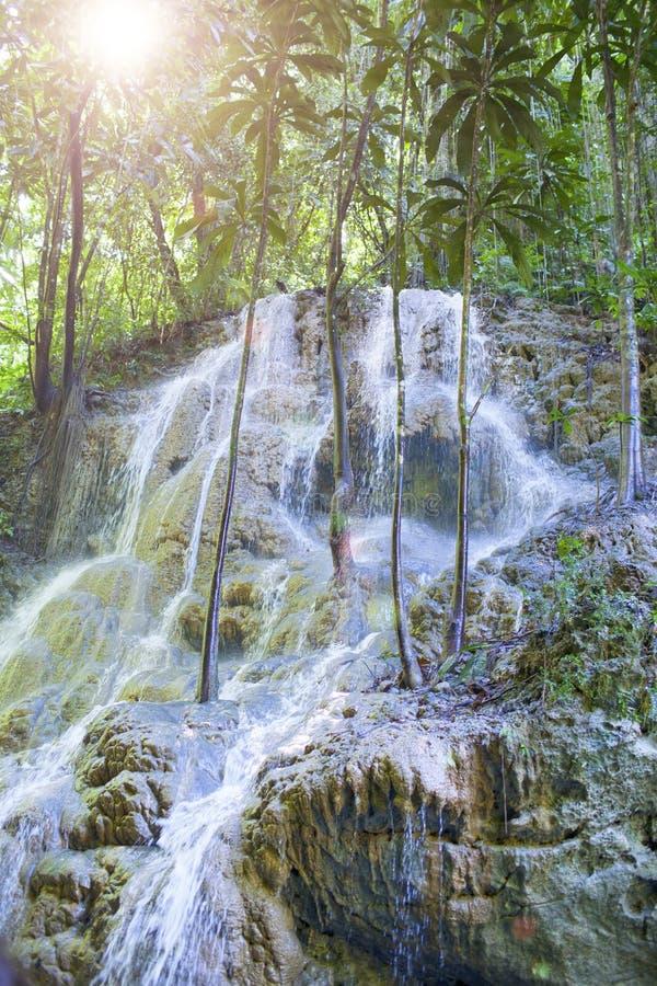 jamaïca Kleine watervallen in de wildernis royalty-vrije stock afbeelding