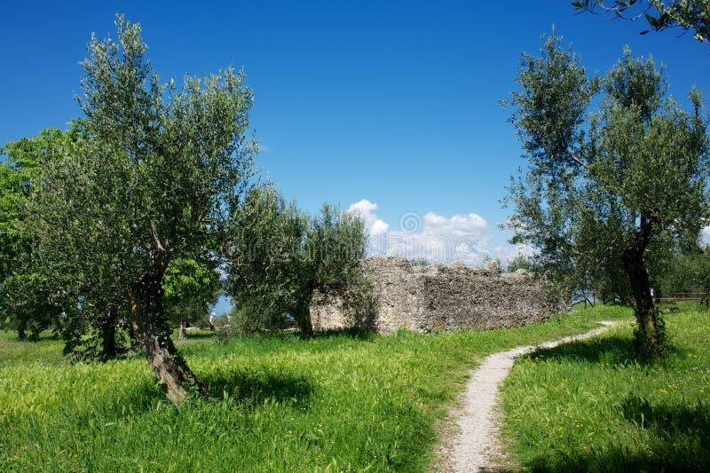Jama Catullus, Włochy obraz stock