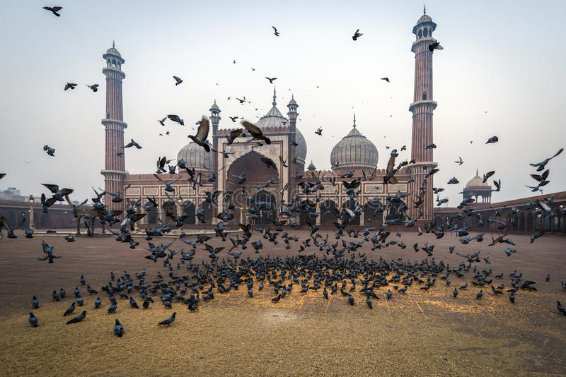 Jama Masjid, Delhi, la India imagenes de archivo