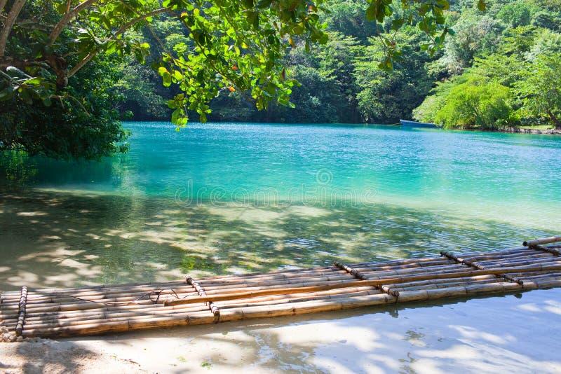 Jamaica. Uma lagoa azul. Paisagem foto de stock royalty free