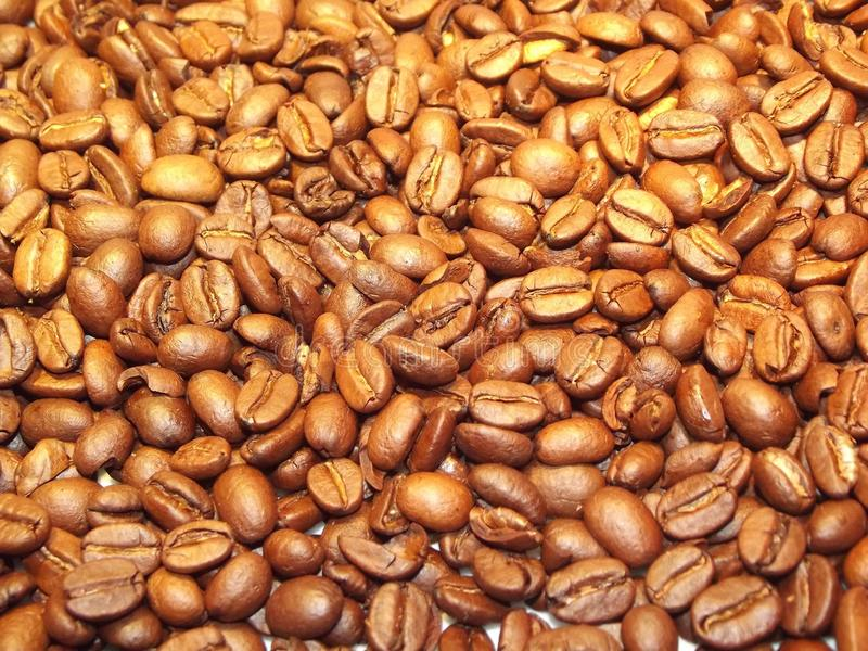 Jamaican Blue Mountain Coffee, Bean, Commodity, Nuts & Seeds stock images