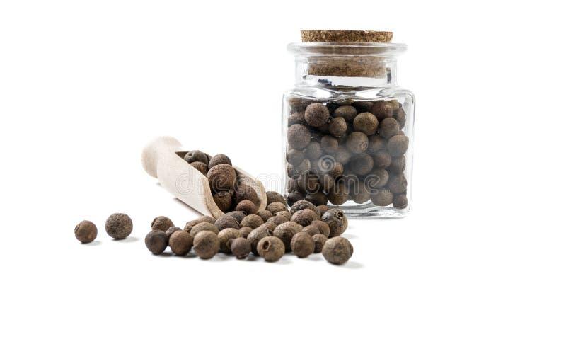 Jamaican peppar för kryddpeppar i träskopa och krus på isolerat på vit bakgrund Bekl?da besk?dar Kryddor och matingredienser arkivfoto