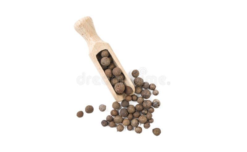 Jamaican peppar för kryddpeppar i träskopan som isoleras på vit bakgrund Top besk?dar Kryddor och matingredienser arkivfoto