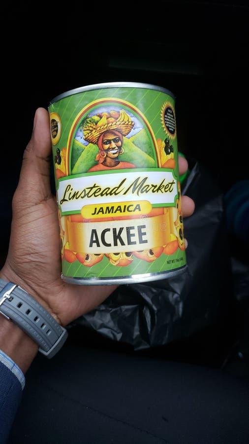 Jamajski ackee w cynie obraz stock