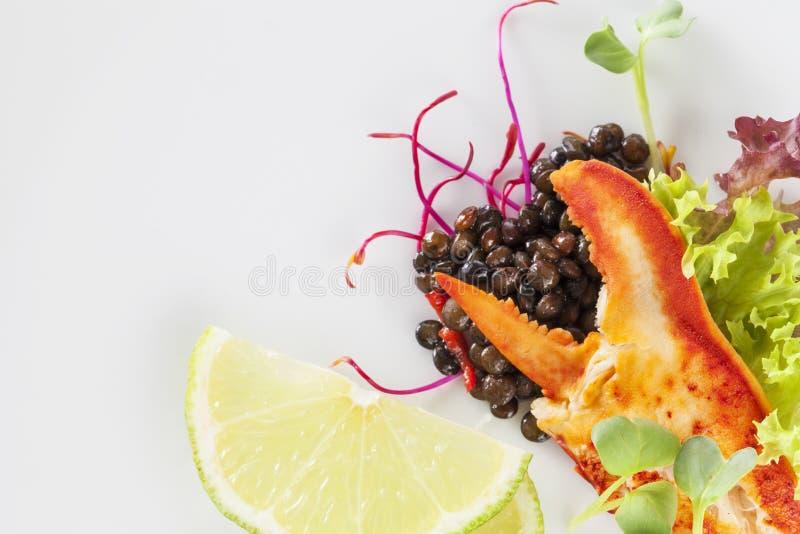 Jambe de homard images stock