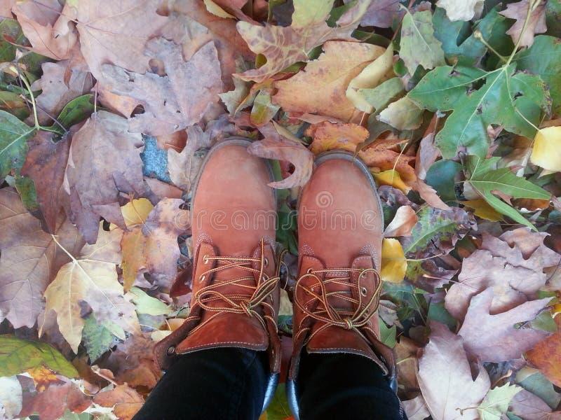 Jambes dans les bottes sur les feuilles d'automne photo libre de droits