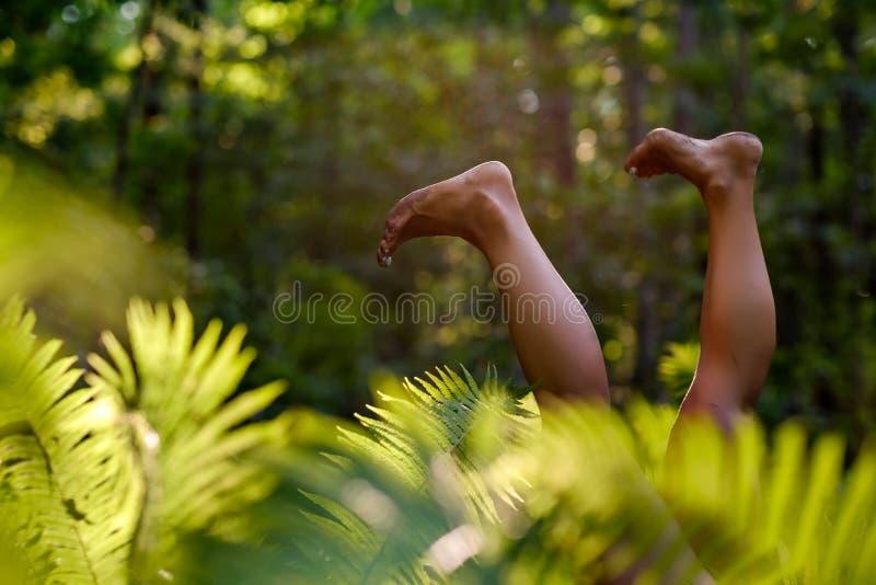 Jambes de femme dans l'herbe de forêt Détendez et concept simple de femme Concept de bonheur et de mode de vie photos libres de droits