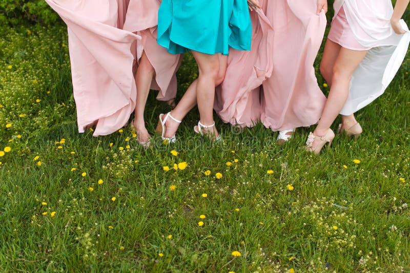 Jambes de jeune mariée et de demoiselles d'honneur image stock