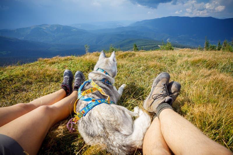 Jambes de montagne se reposante de voyageur chez le chien de voyage photo stock
