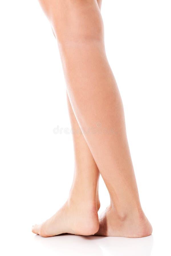 Jambes femelles minces de beauté, d'isolement images stock