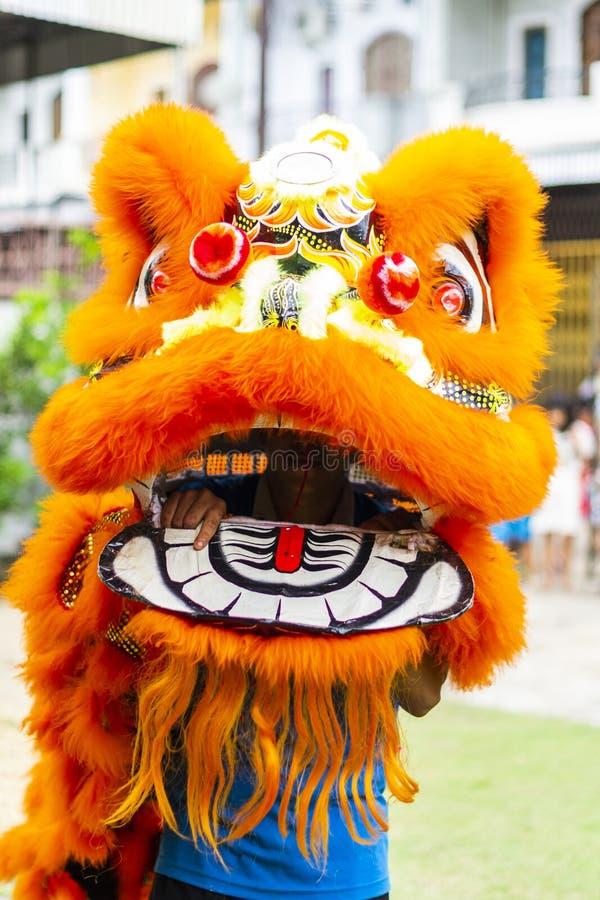 Jambi, Indonésia - 28 de janeiro de 2017: Dança de leão que faz a acrobacia para comemorar o ano novo chinês imagem de stock royalty free