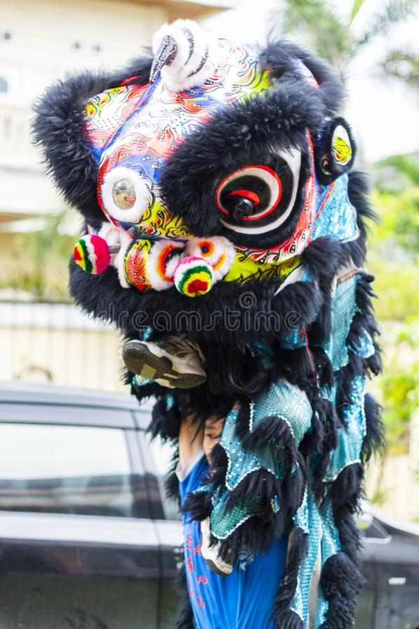 Jambi, Indonesia - 28 gennaio 2017: Ballo di leone che fa l'acrobatica per celebrare nuovo anno cinese immagini stock libere da diritti