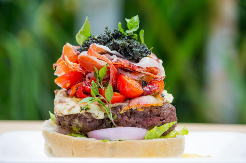 Jambon de Parme d'hamburger images stock