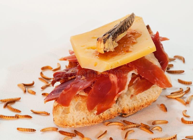 Jambon de Serrano sur le pain grillé photo stock