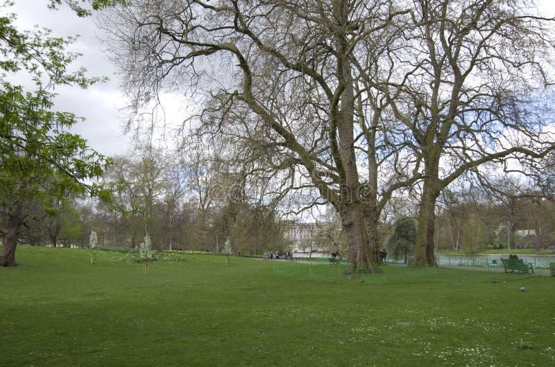 Download James london parkst redaktionell arkivfoto. Bild av damm - 106827568