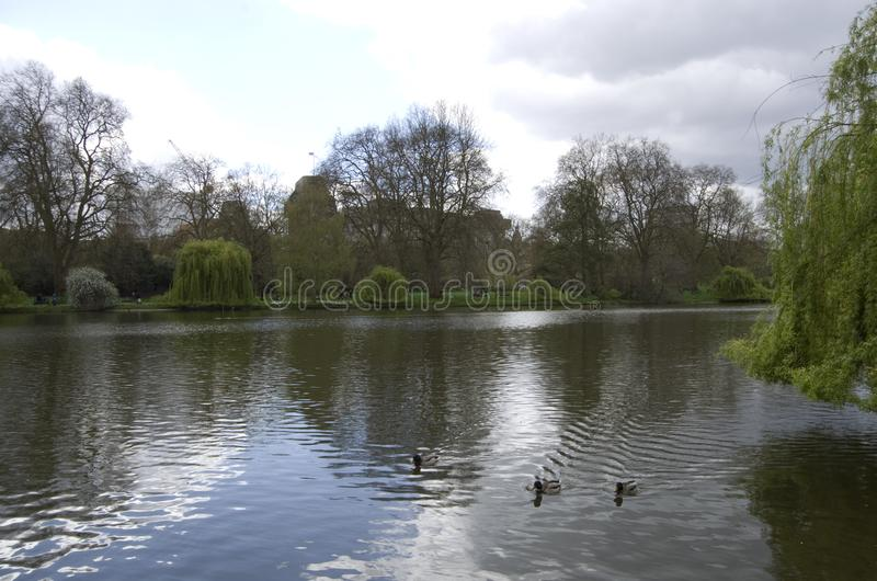 Download James london parkst redaktionell bild. Bild av trädgårdar - 106827851