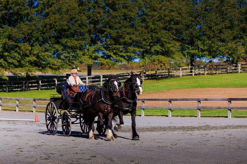 James River Driving Association event in Staunton Va royalty free stock photo