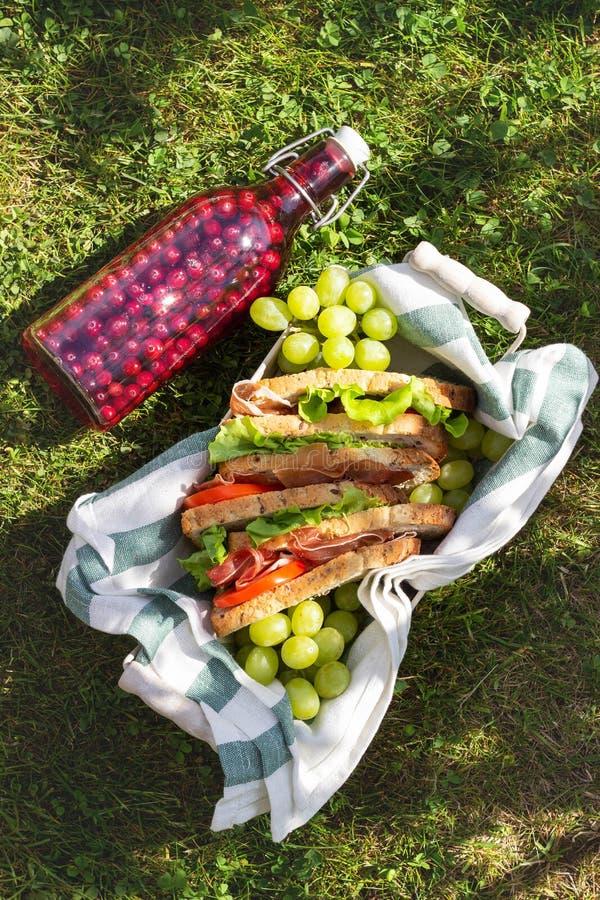 Jamon e sanduíches vegetais em uma cesta, em uvas e em suco da baga, piquenique exterior imagem de stock royalty free