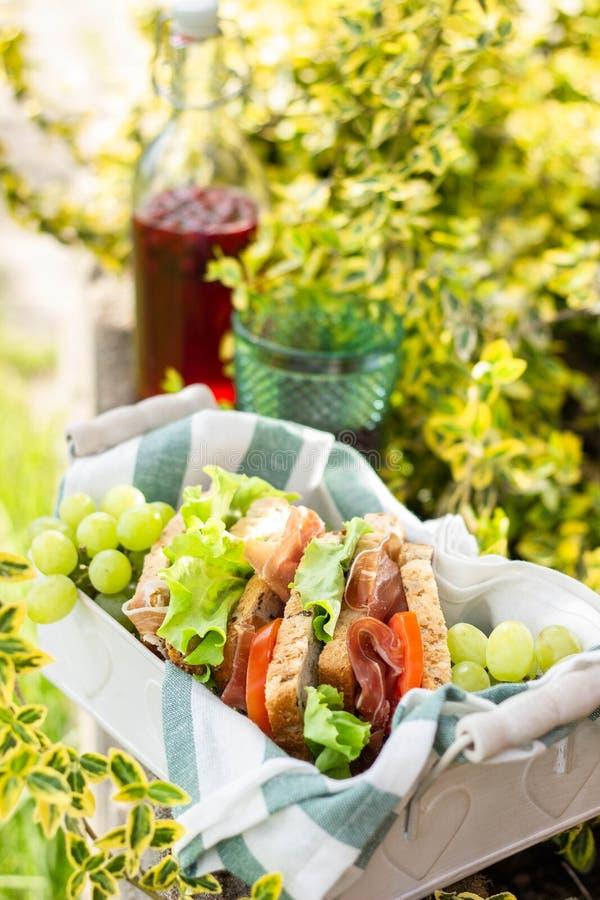 Jamon et sandwichs végétaux en panier, raisins et jus de baie, pique-nique extérieur image libre de droits