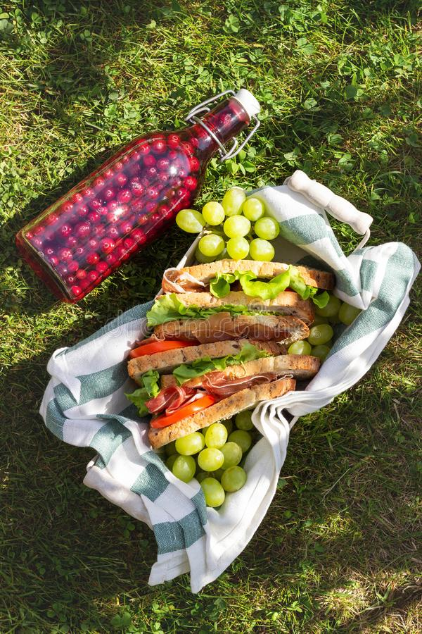 Jamon and vegetable sandwiches in a basket, grapes and berry juice, outdoor picnic royalty free stock image