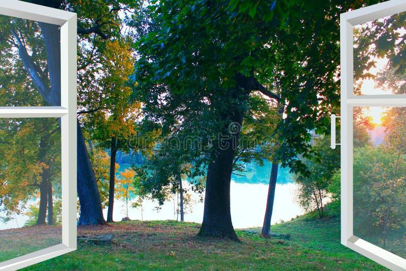 Janela aberta com vista ao lago da floresta imagens de stock royalty free