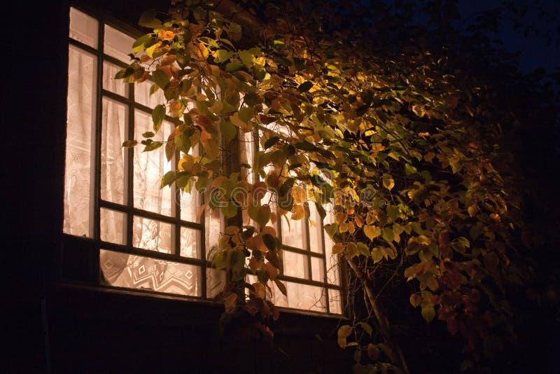Janela clara da noite foto de stock royalty free