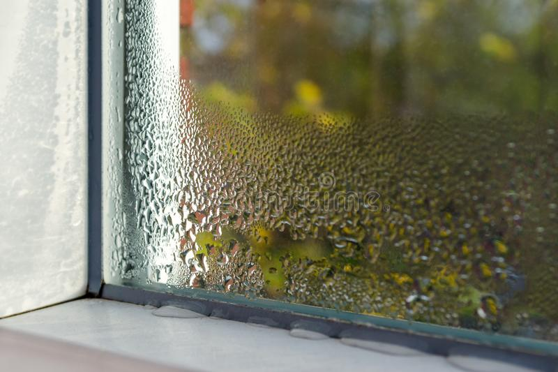 A janela com água deixa cair o close up, foco interno, seletivo imagem de stock