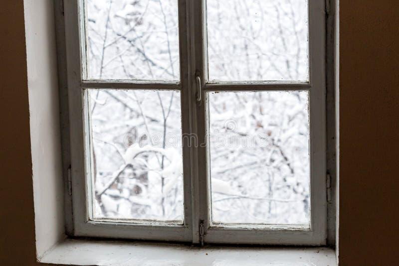 Janela com paisagem do inverno, ramos de árvore cobertos com a neve imagens de stock royalty free
