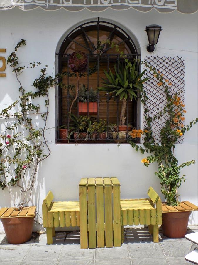 Janela com planta-Tarifa-Cadiz-Andaluzia-Espanha imagem de stock royalty free
