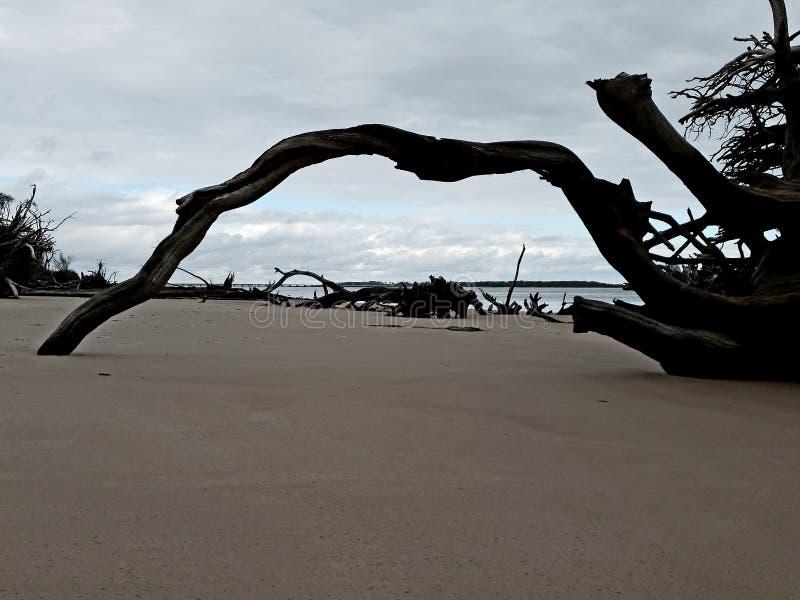 Janela da madeira lançada à costa foto de stock royalty free